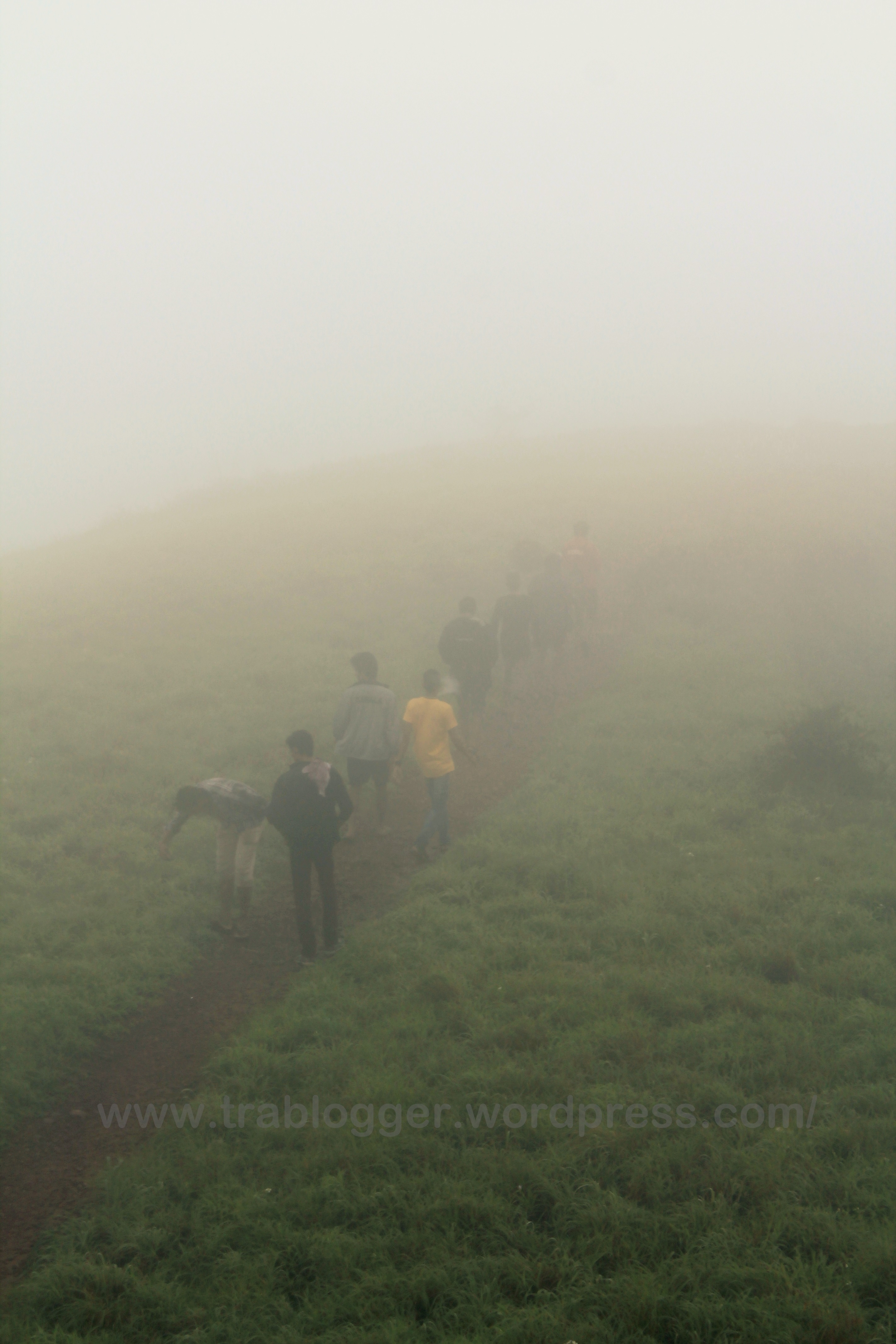 the other vaithalmala trekkers!