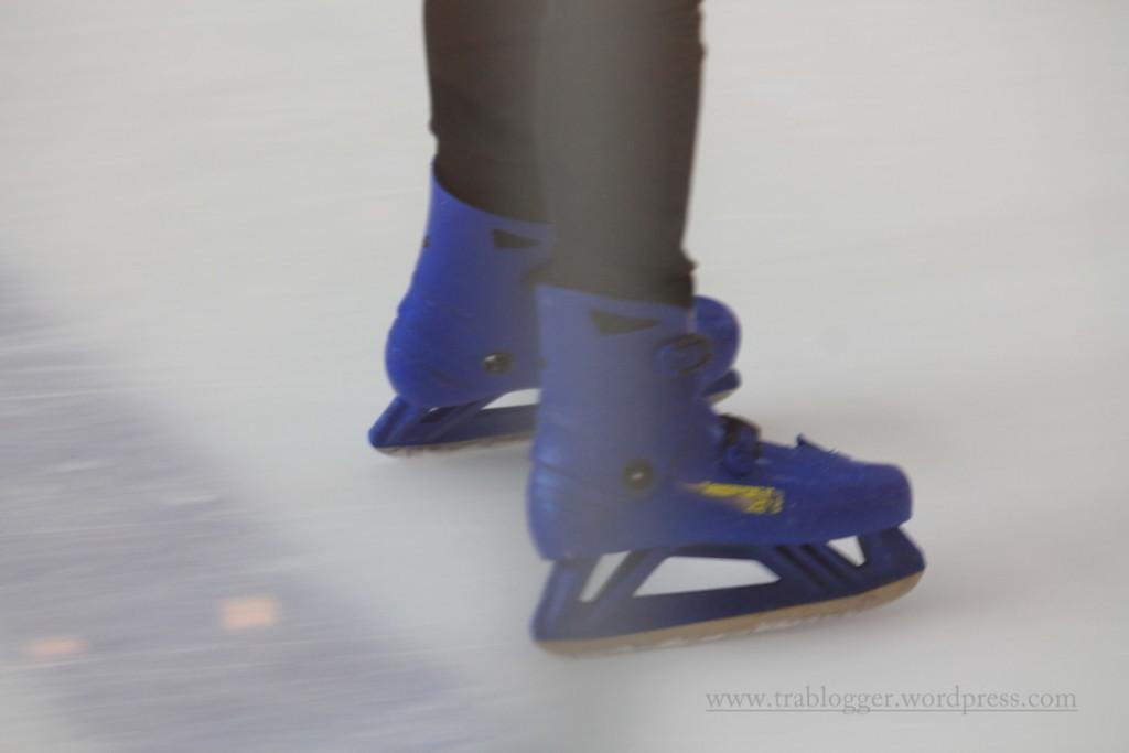 Legs of Dubai Ice Rink 5