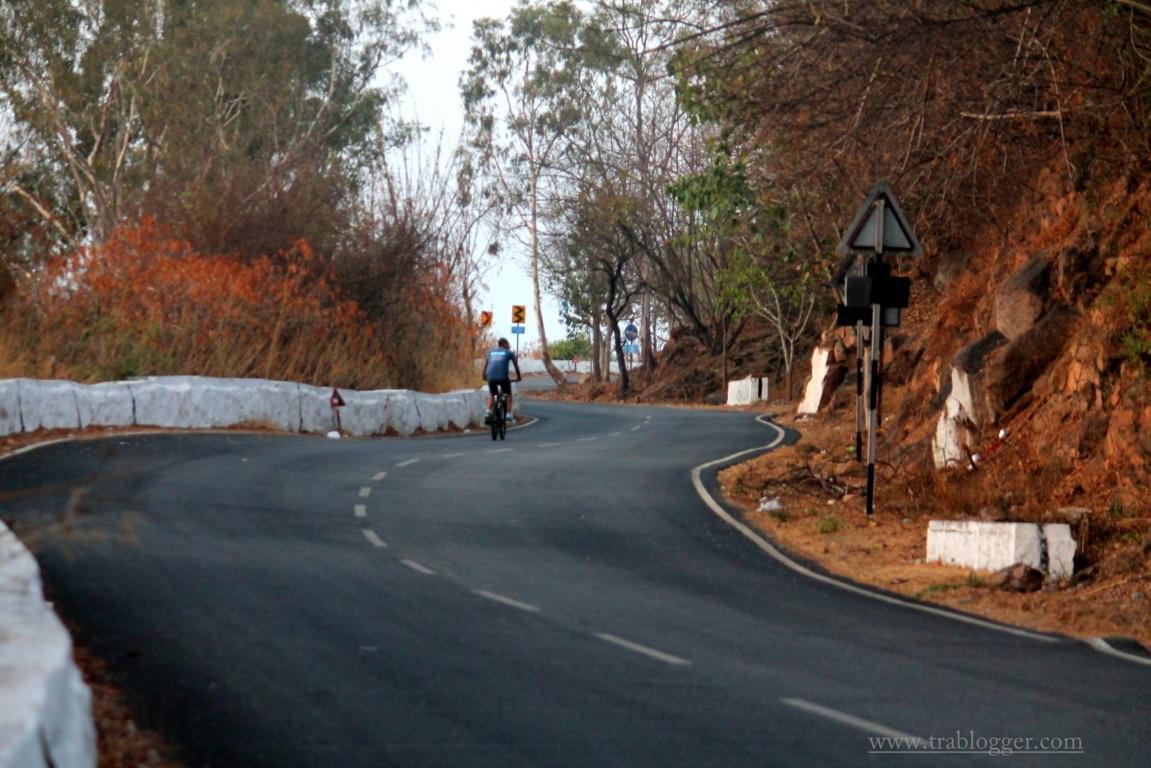 Chamundi curvy roads