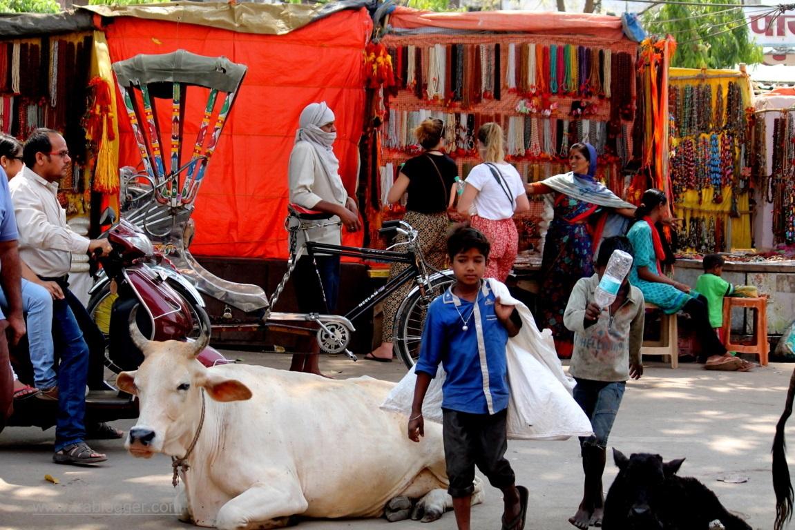 Varanasi : An overall view